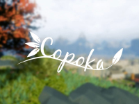 Review � Copoka